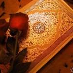 Türkçe Ücretsiz Kur'an-ı Kerim Öğrenme Programı – Kur'an Öğreniyorum Bedava İndir Download Yükle
