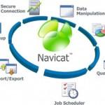 Windows için MySQL Yönetim Programı – Navicat MySQL İndir Download Yükle