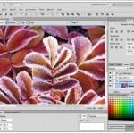 Türkçe Web Tasarım ve Mobil Uygulama Yapma Programı – Adobe Fireworks CS6 İndir Download Yükle