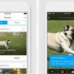 iPhone ve iPad İçin Kolaj Video Yapma Uygulaması – RealTimes: Video Maker İndir Download